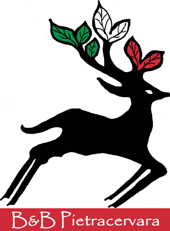 Logo BB Pietracervara-ridotto